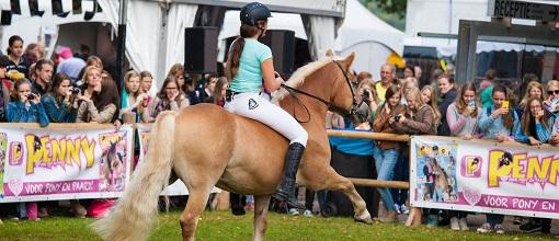 Horse event 2016